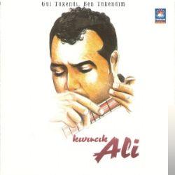 Gül Tükendi Ben Tükendim (1998)