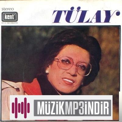 Tülay Özer Deli Etme Beni Aşk (Plak) Mp3 İndir Dinle - Mp3 Kulisi